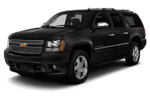 Premium 8 Seater SUV